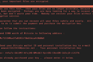5 Best Ransomware Protection Tips to Protect Your Organization