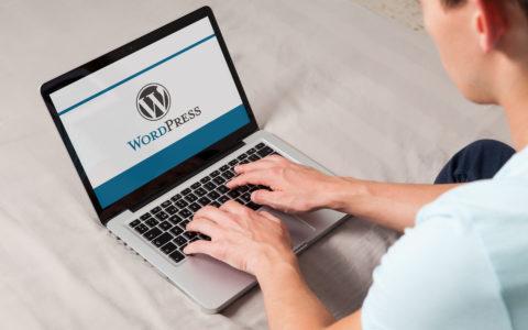 WordPress Stats: 20 Eye-Opening WordPress Statistics