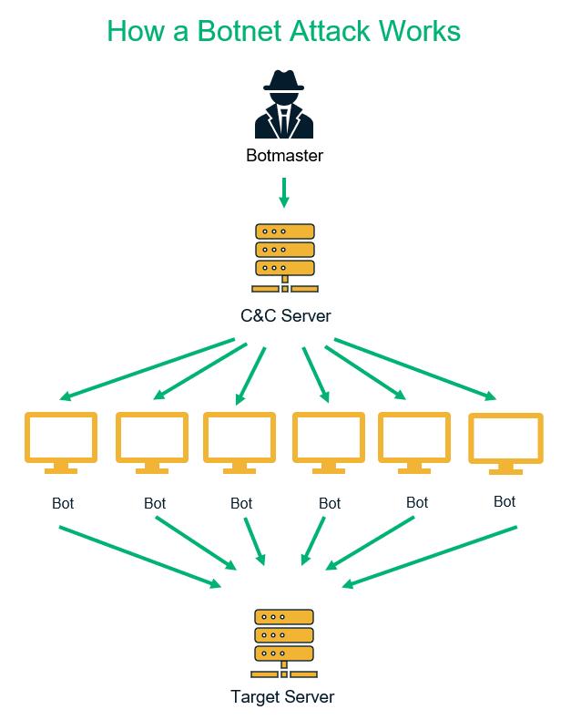 An illustration of how a basic botnet attack works