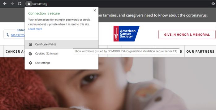 A screenshot of the American Cancer Society website that shows the security padlock and organizational information