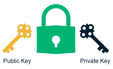 An example of a public-private key pair that X.509 certificates use