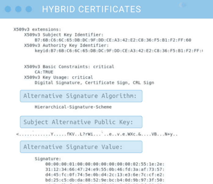 An illustration of the alternate fields that hybrid digital certificates would include