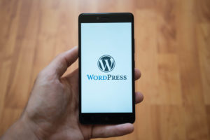 WP Security: The Ultimate Guide to WordPress Security