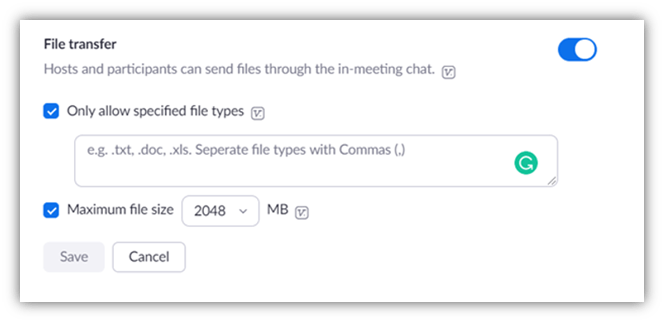 Is Zoom secure graphic: A screenshot of the Zoom file transfer window that allows users to specify which file types they will allow users to share in chat.