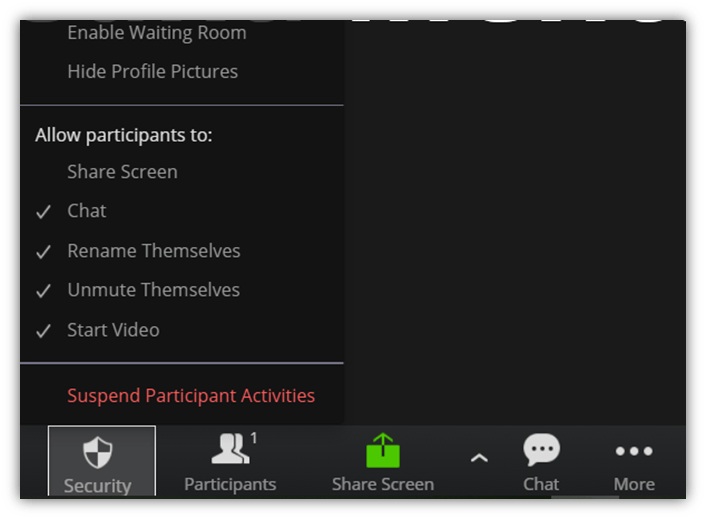 A screenshot in a Zoom chat meeting that shows where to suspend participant activities