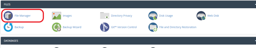 Files Option in cPanel